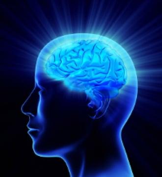 Energetic Brain best reveiw star